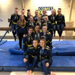 Gymnastics Heading to States