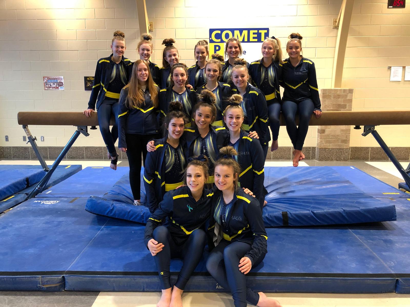 Gymnastics Heading to States