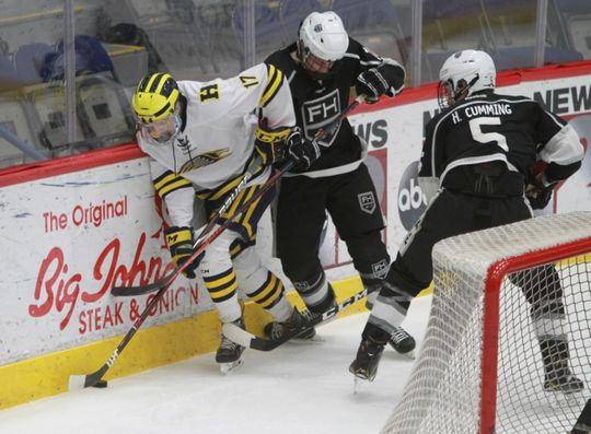 Hartland's Ryan Whitton (17) battles to maintain control of the puck behind the net during a 6-0 victory over Forest Hills Eastern in the state hockey quarterfinals on Tuesday, March 5, 2019.