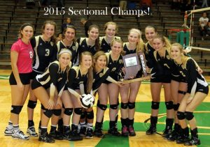 Volleyball Sectional 2015