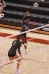 Volleyball Vs Walton