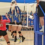 Volleyball Sweeps Springfield