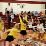 Volleyball Sweeps Woodridge