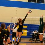 Volleyball Sweeps Cloverleaf
