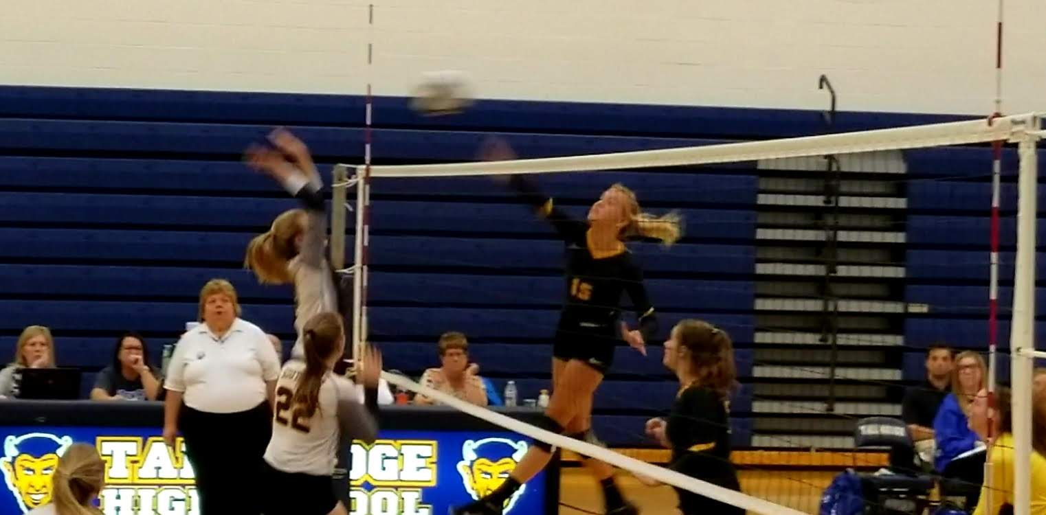Volleyball Defeats Southeast in Sectional Finals