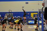 Volleyball Wins Close Match vs. Barberton