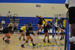 Volleyball Sweeps CVCA