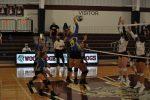 Volleyball Defeats Woodridge