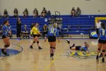 Volleyball Defeats Northwest