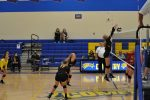 Volleyball Sweeps Field