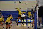 Meinen's Lead Volleyball Team to Big Win Over Triway