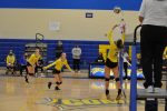 Volleyball Sweeps Triway to Reach District Championship for First Time Since 1983