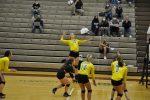 Volleyball Defeats Tallmadge to Reach Regional Finals