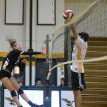 Photos - CoEd Volleyball