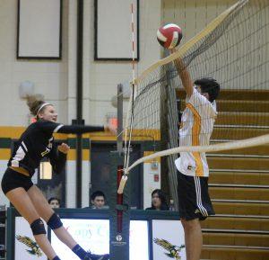 Photos – CoEd Volleyball