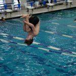 Boys Swim and Dive 2019-2020