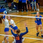 Varsity Volleyball vs Powers Catholic 10/29/19