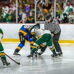 Hockey vs HH Dow 1/29/20