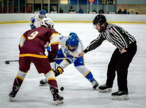 Hockey vs. Davison 2/12/20