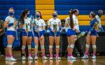 Chemic Volleyball Seniors