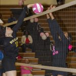 Lady Panthers vs. Dillon – Gallery