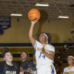 Lady Panthers Fall to Wildcats