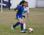 Lady Panthers outlast Lakewood 3-2