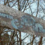 Stampede In the Park 5K Trail Run and Fun Run, January 31,2015