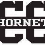 Two Hornet runners named to all county team