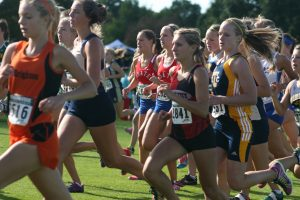 MSU Spartan Cross Country Invitational Elite Meet 9/13/13