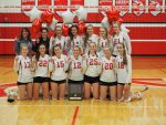 Varsity Volleyball Earns Team Academic All-State