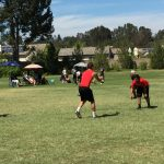 Herald Football in championship game of North Orange County Passing tournament!
