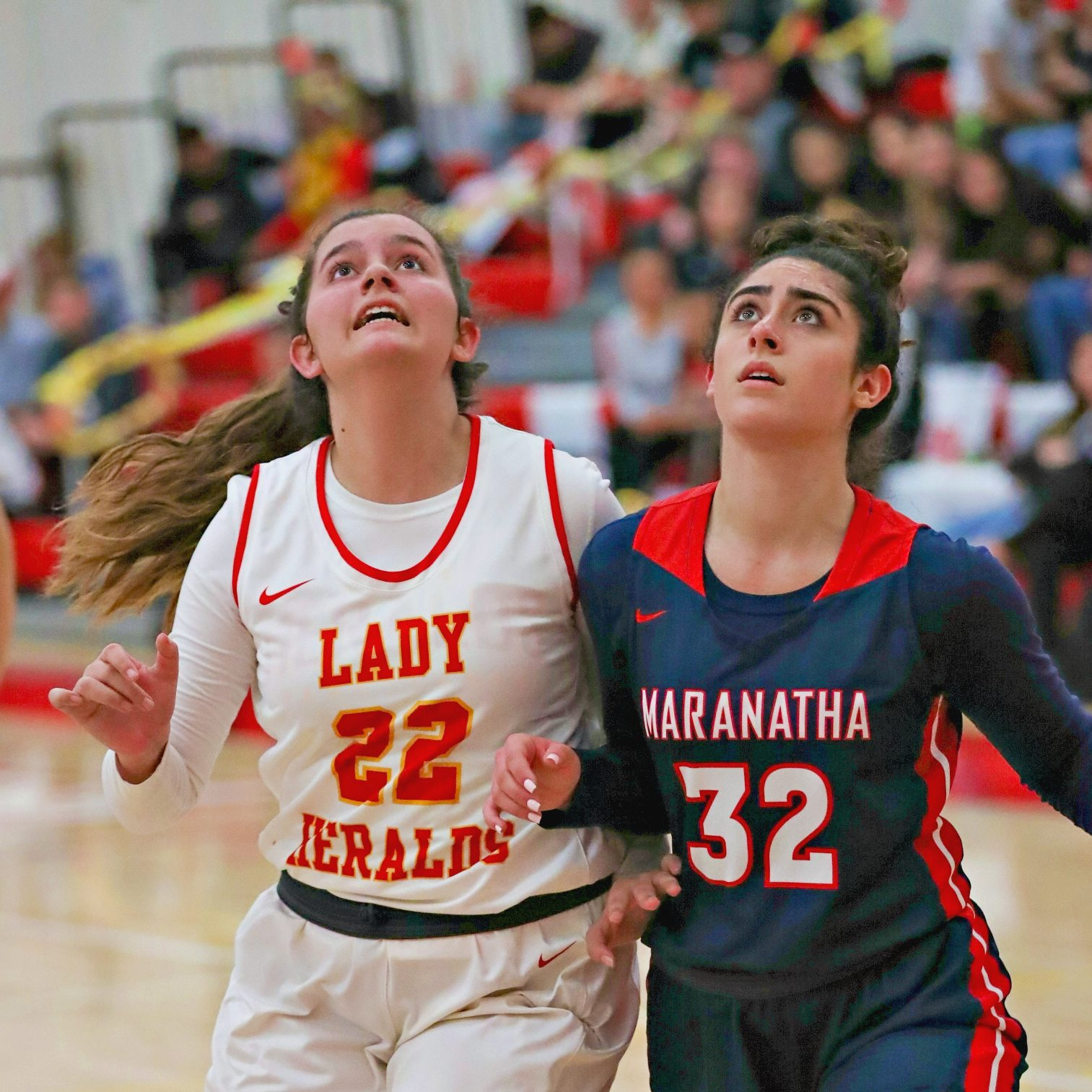 WC Basketball's Haley Gainer Named One of Top Returning Rebounders in Orange County