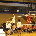 Volleyball Defeats Washington