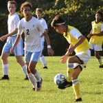 Scrappy display by Wildcats earn them a Draw