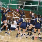 Ladycats take second in City Tourney