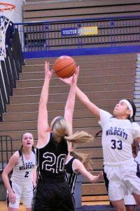 Girls JV basketball against John Glenn