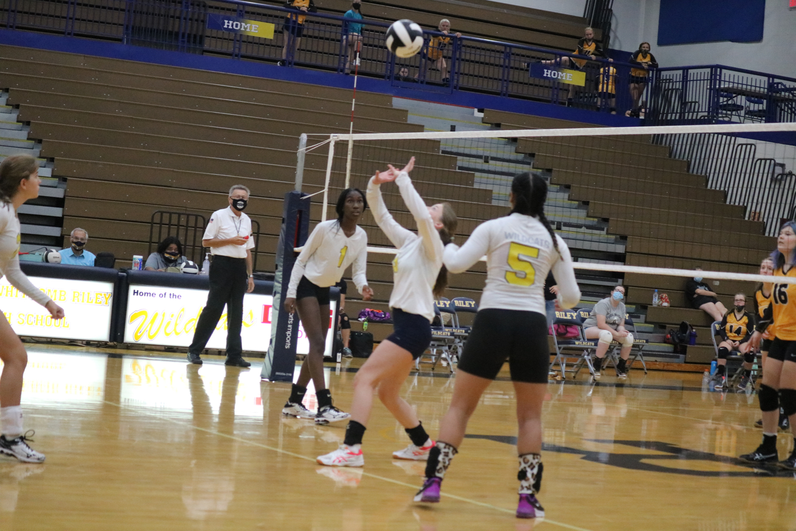 Ladycats can't hold off Argos