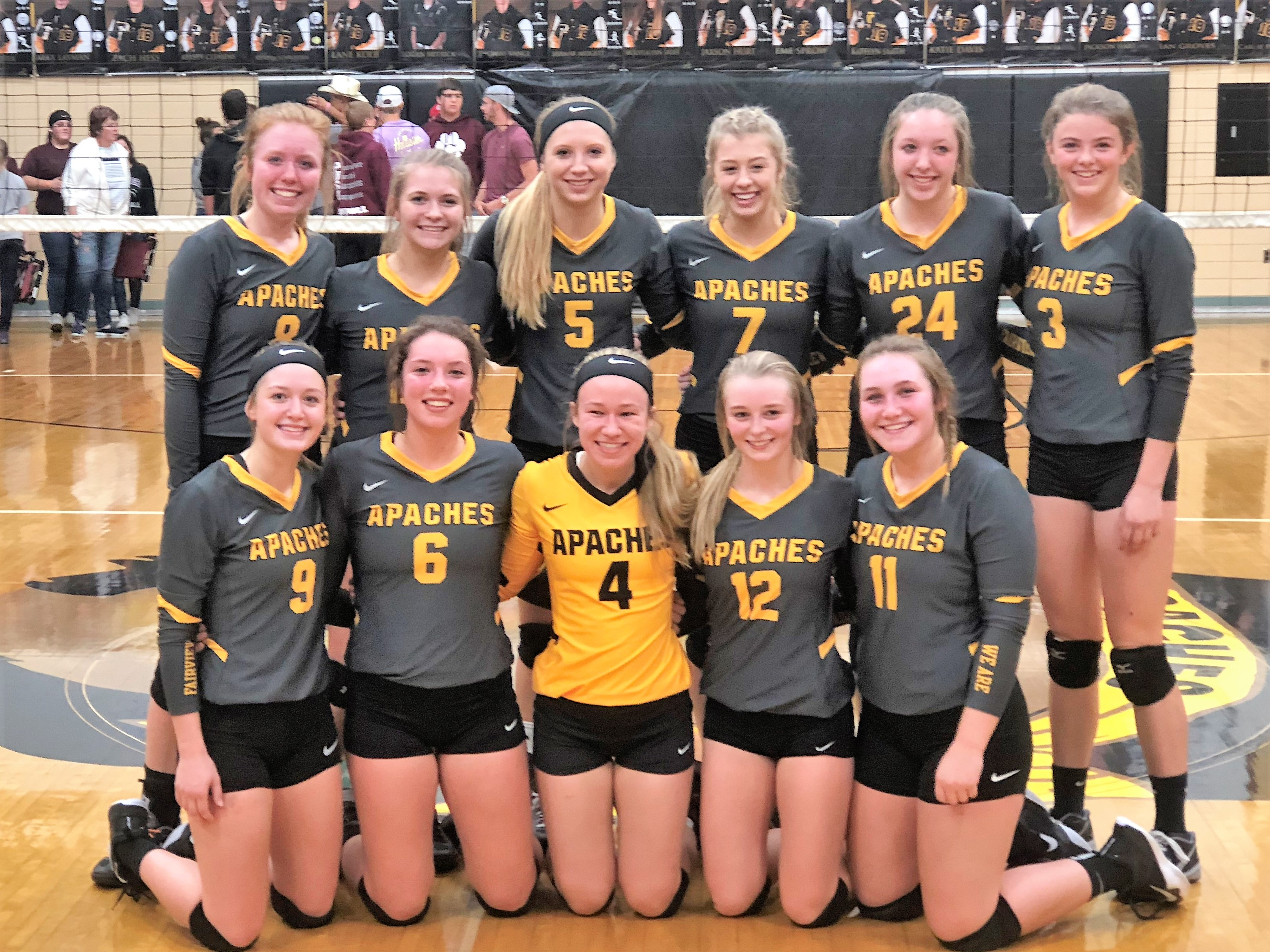 Volleyball wins Sectional title