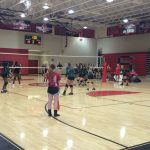 Volleyball Sweeps Timberland