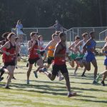 Cross Country Finishes Season with Strong State Meet