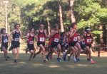 Boys Cross Country wins Berkeley County Championship, Girls 2nd