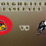 HS Baseball: WJ vs Triad