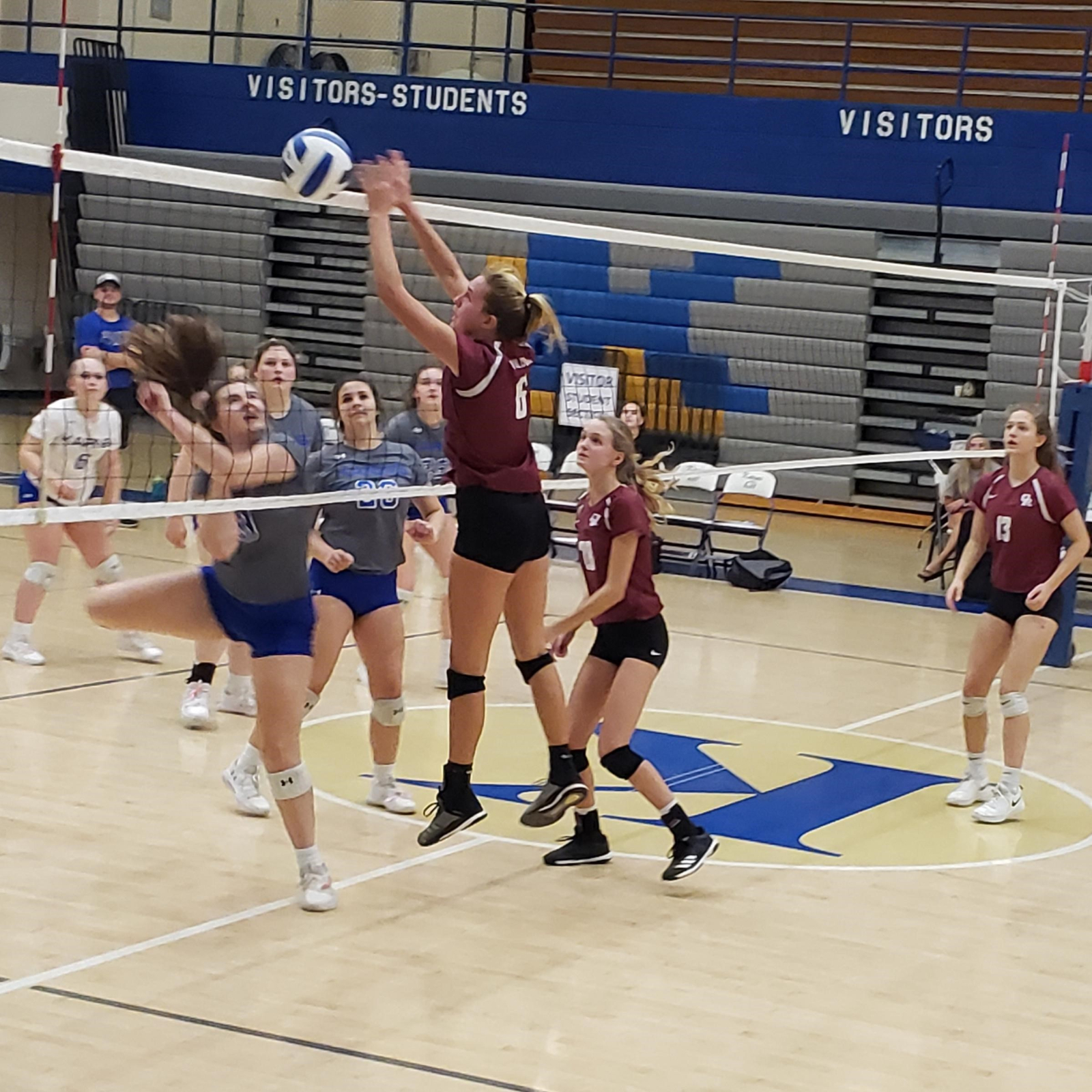 Lady 'Cats Finish Regular Season With a Win over Lady Beavers