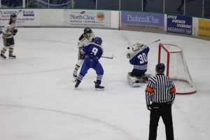 Boys Hockey vs Wayzata Hockey 2/11/17