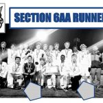 Boys soccer wraps up season with 2nd place finish in Section 6AA