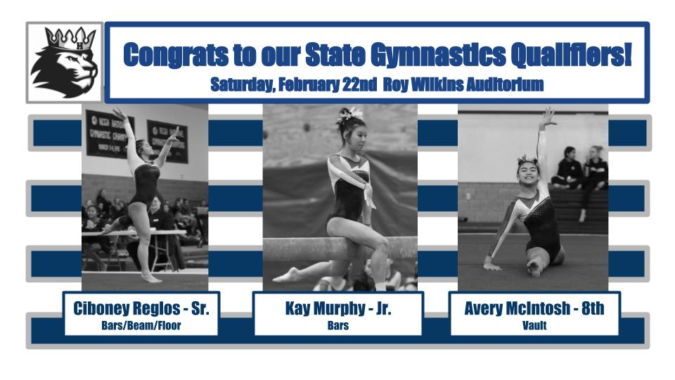 Second Place Finish and 3 State Meet Qualifiers for Gymnastics!