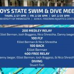 Boys Swim & Dive Heads to the State Meet