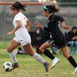Girls Varsity soccer beats Los Amigos 3-0