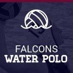 Varsity Girls Water Polo falls to El Camino